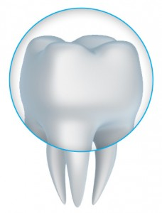 Beautiful dental crowns in West Palm Beach and Palm Beach Gardens